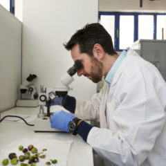 Kostas Dimizas in a Small GEP lab in Acharnes, Greece.